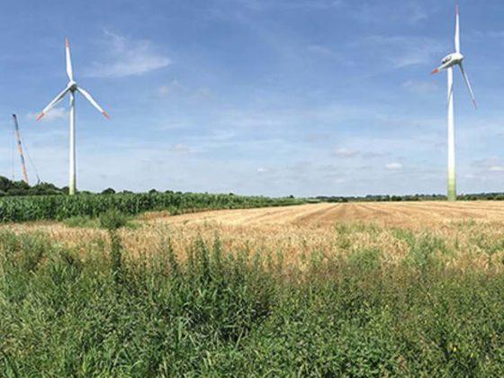 umaag windenergie